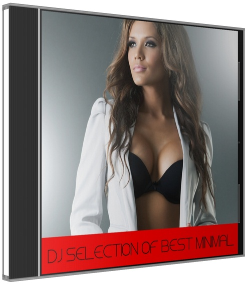 VA - DJ Selection of Best Minimal (2015) MP3